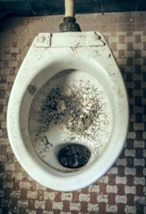 toilet-messy-gross